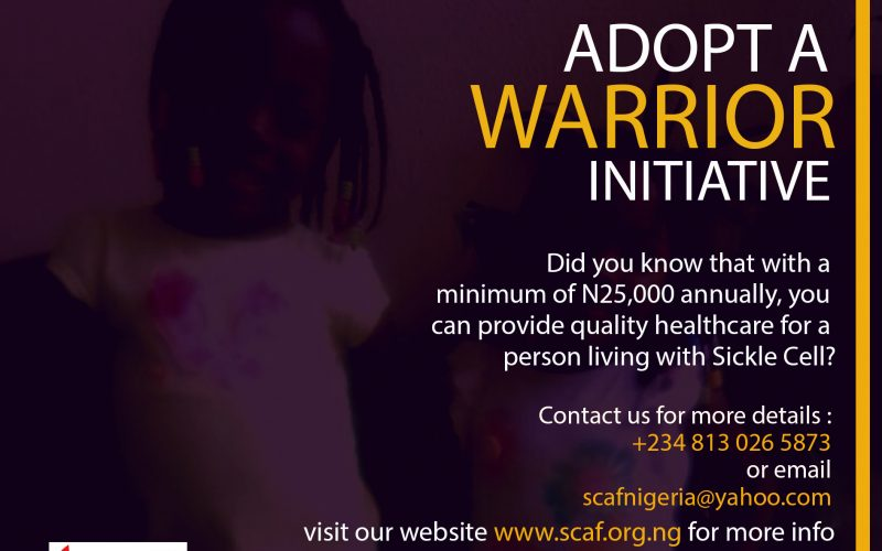 adopt a warrior 2 girls